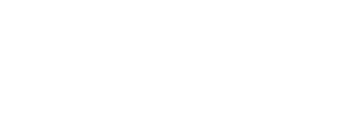 The Faces Of North Tampa